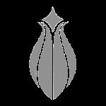stílus ikon